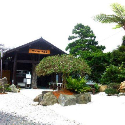 マングローブ茶屋 写真