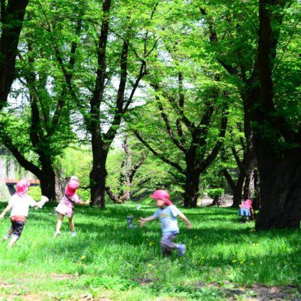 幼稚園・保育所はどうやって選ぶ?選び方のポイントや申し込み方法